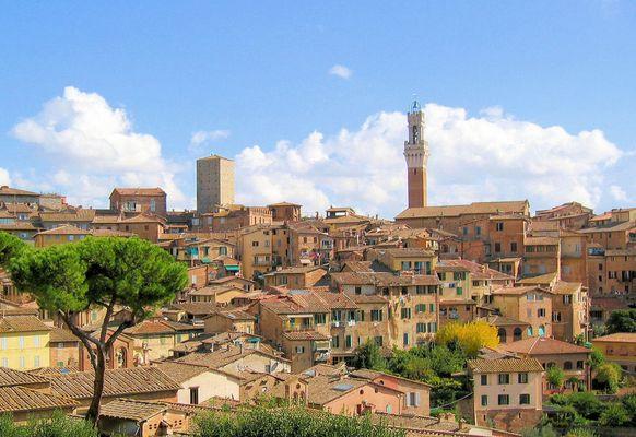 Stadtansicht von Siena
