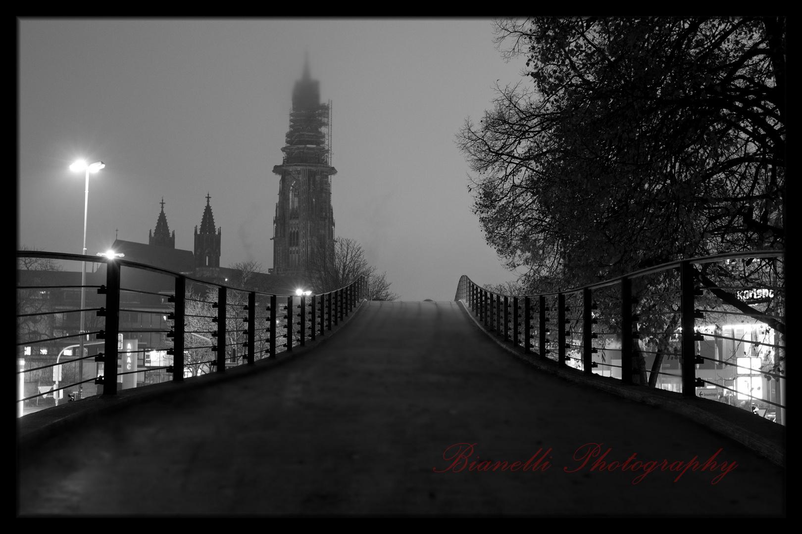 Stadtgarten Brücke