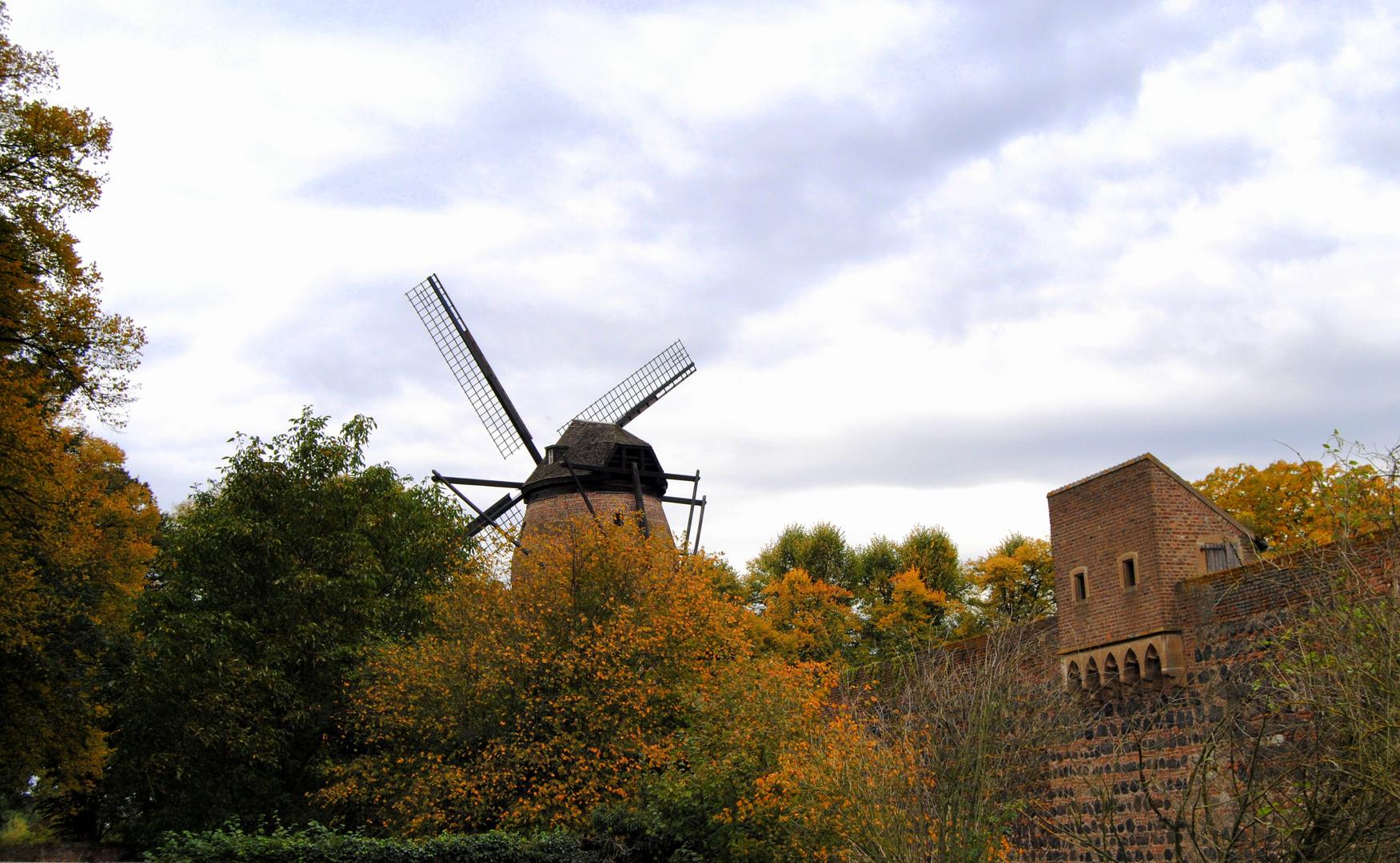 Stadtmauer und Windmühle in Zons
