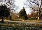 Stadtpark Fürth #2