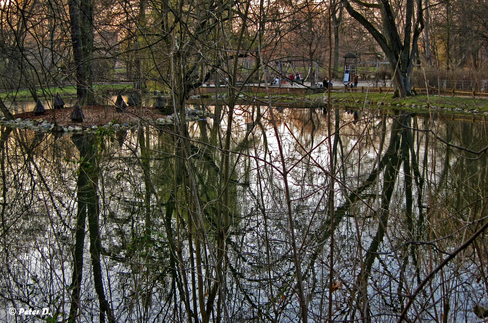 Stadtpark Fürth #6