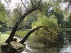 Stadtpark Gotha