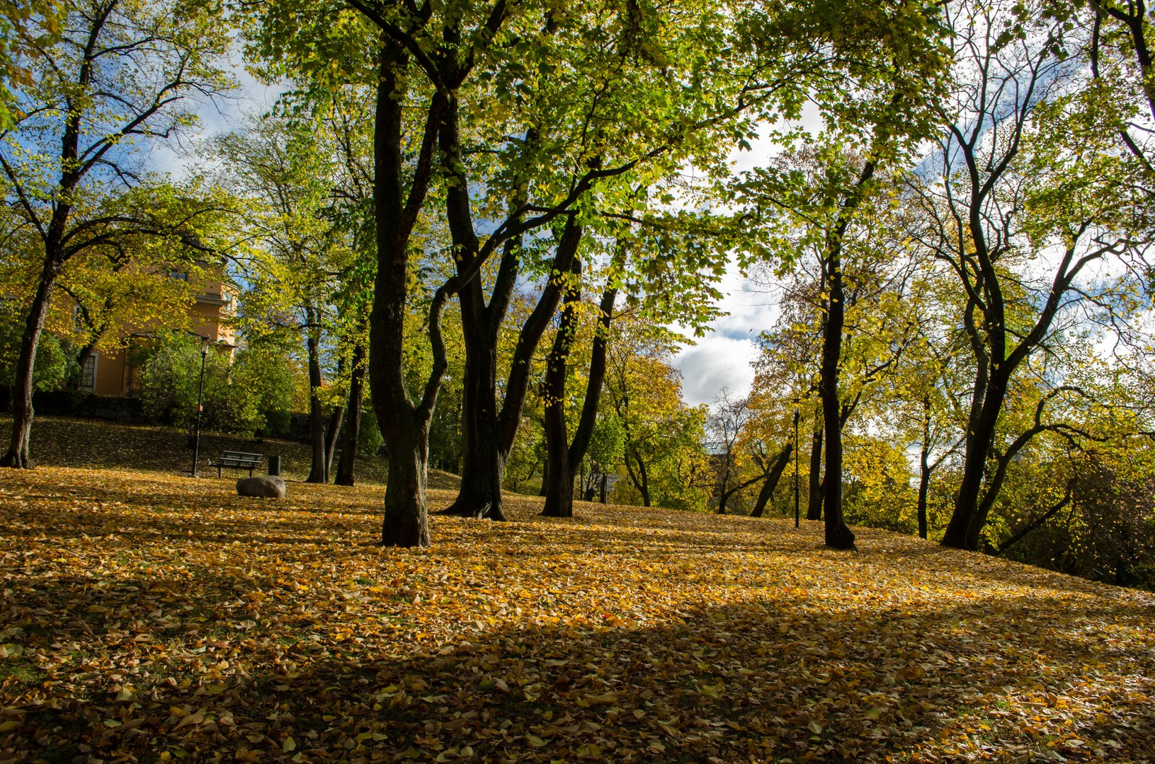 Stadtpark im Stockholmer Herbst