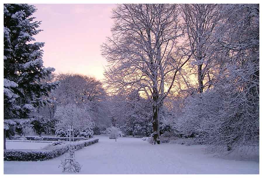 Stadtpark im Winter (1)