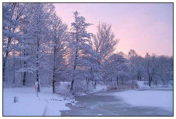 Stadtpark im Winter (3)