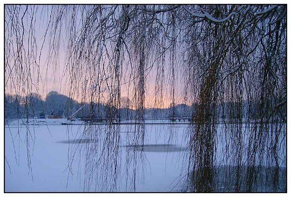 Stadtpark im Winter (4)