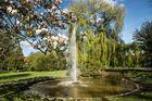Stadtpark in Zeven