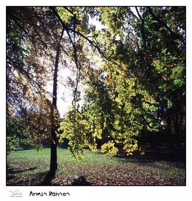 Stadtpark Regensburg - Herbst 2004