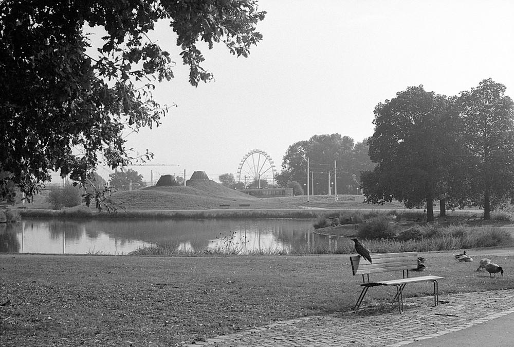 stadtpark stuttgart analog 03