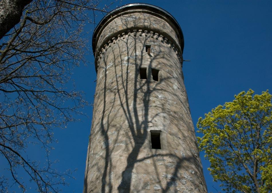 Stadtpark Theresienstein - Hof