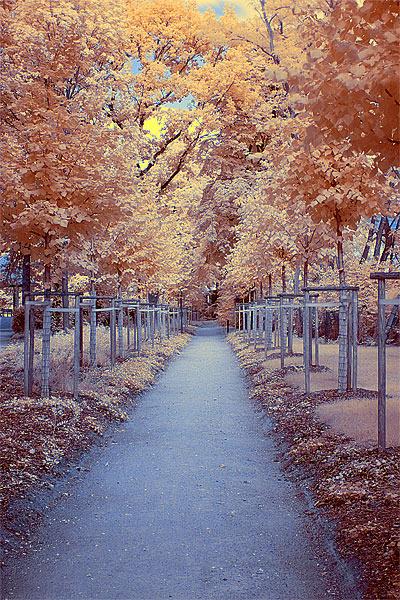 Stadtparkweg