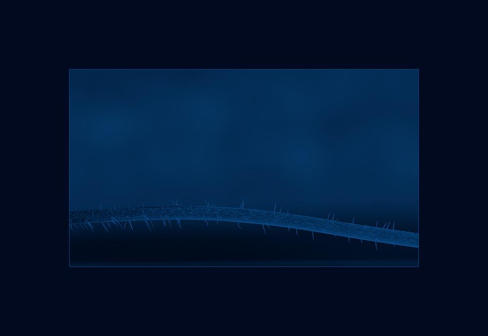 ...stängel in blau......