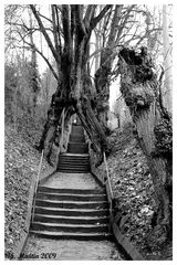 Stairs to......
