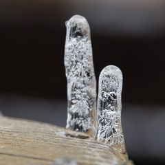 Stalagmiten