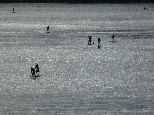 Stand Up Paddle en Baie de DOUARNENEZ