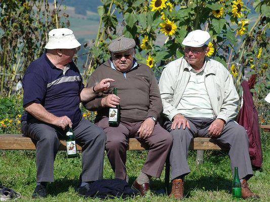 Standartwehntalerapfelweinkonsumenten