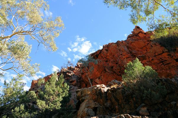 Standley Chasm (1)