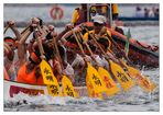 Stanley International Dragon Boat Championship 02