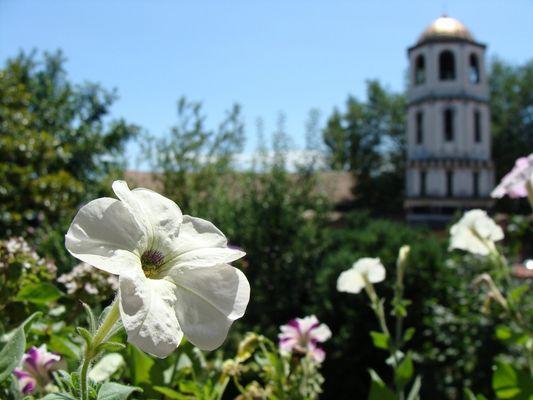 Staria Plovdiv