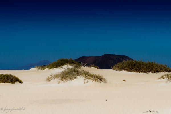 Starke Kontraste auf Fuerteventura!!!