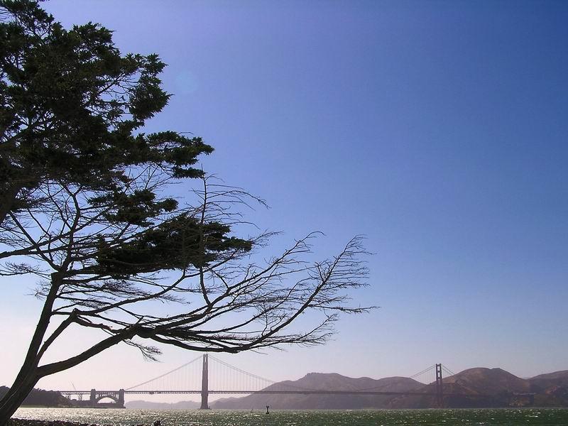 Starke Winde in San Francisco