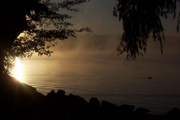 Starnberger See #7