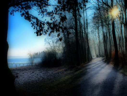Starnberger See mit Park (Possenhofen)