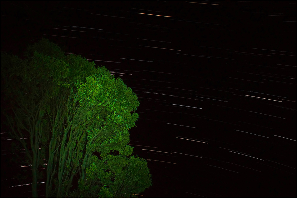 Startrails at Coromandel | New Zealand