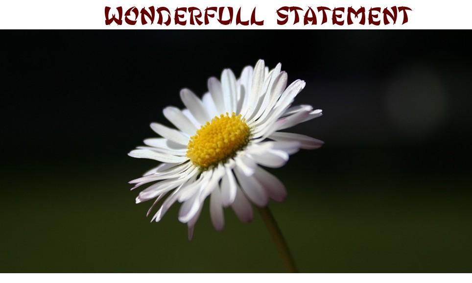 [ Statement ]