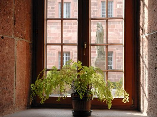 Statue de Sainte Odile (patronne de l'Alsace) vue depuis l'intérieur du cloître.