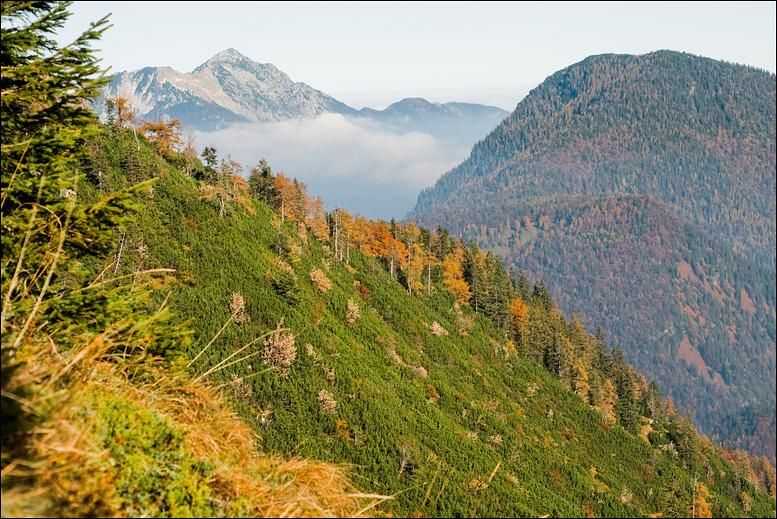 Staufen Herbstfarben