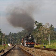 Steam Freight to Badulla XXXVII