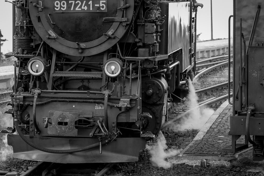 steam train s/w