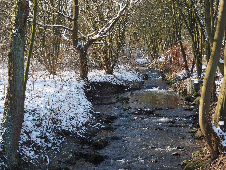 Stefansbecke im Winter
