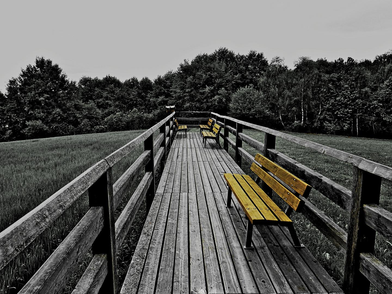 Steg in der Landschaft