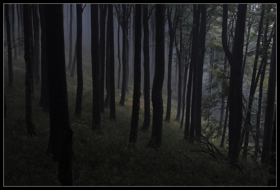 steigender Nebel