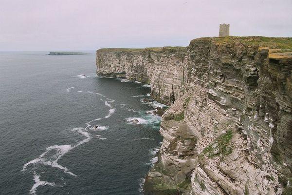 Steile Brutplätze auf den Orkney-Inseln (1997)