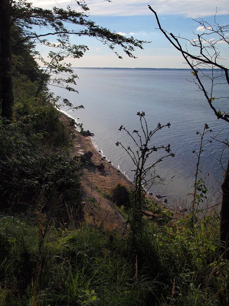 Steilküste bei Dänisch-Nienhof
