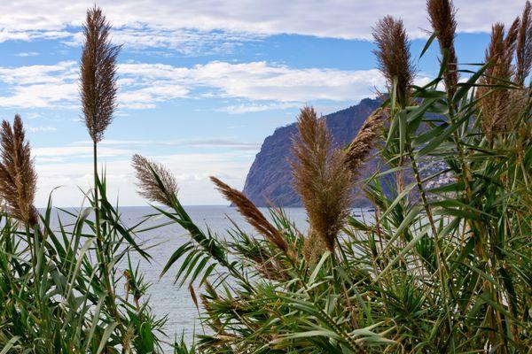 Steilküste Cabo Girao