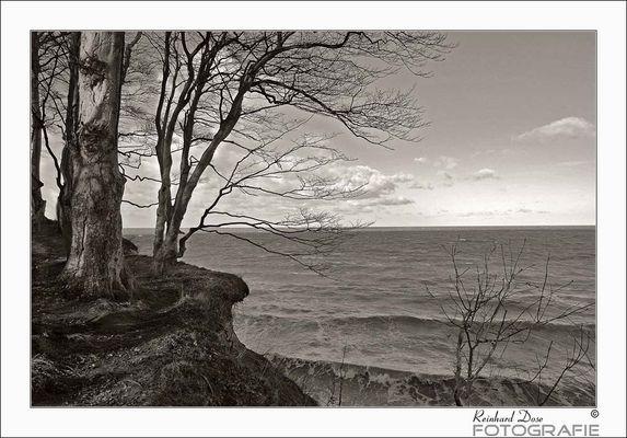 Steilküste II....