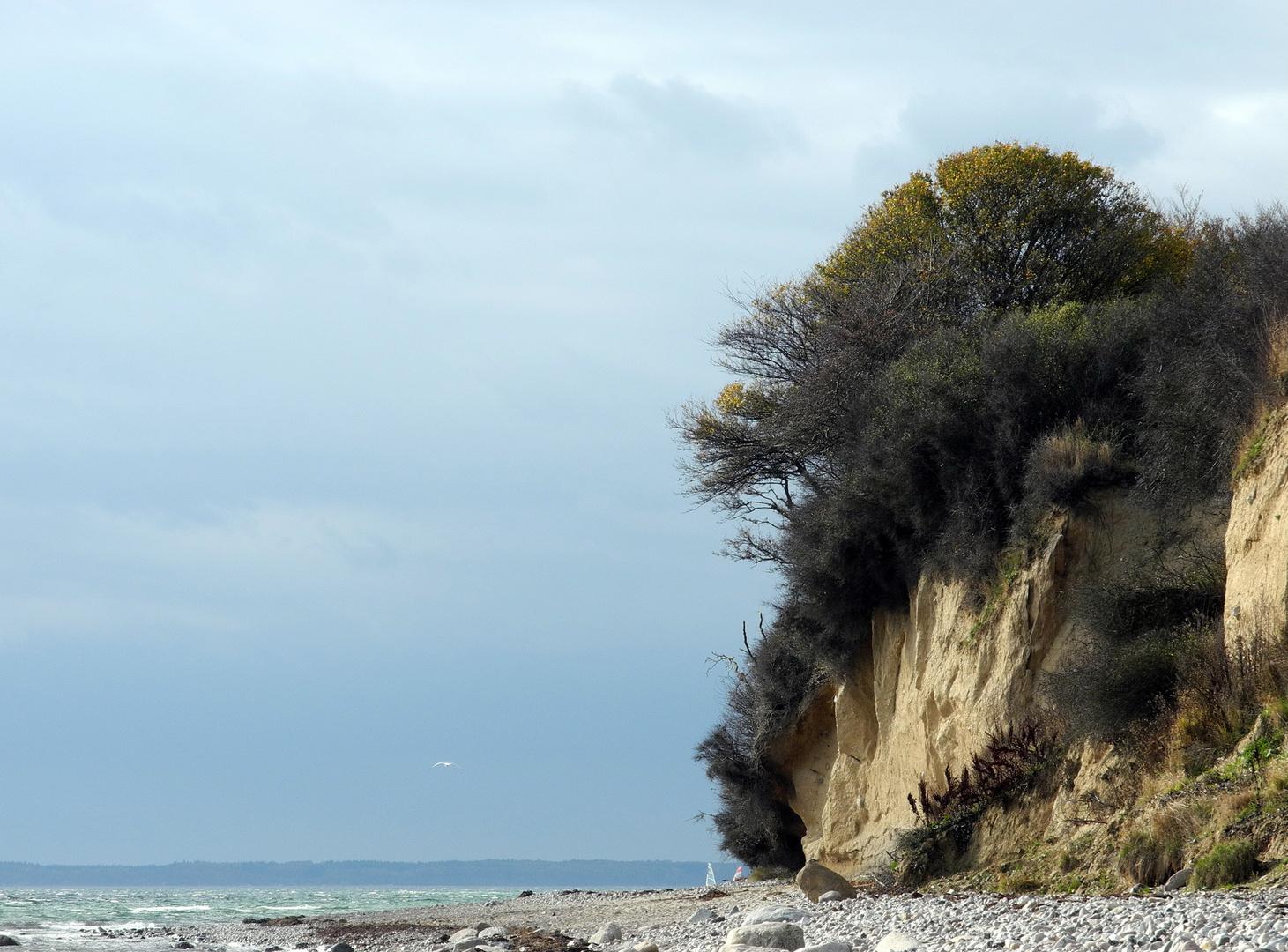 Steilküste im Herbst