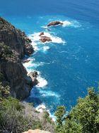 Steilküste korsikas
