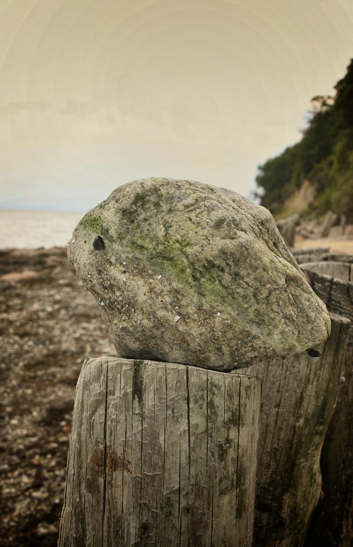 Stein am Strand