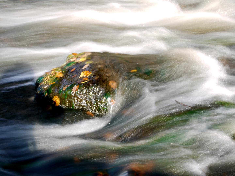 Stein in der Strömung eines kleinen Flusses