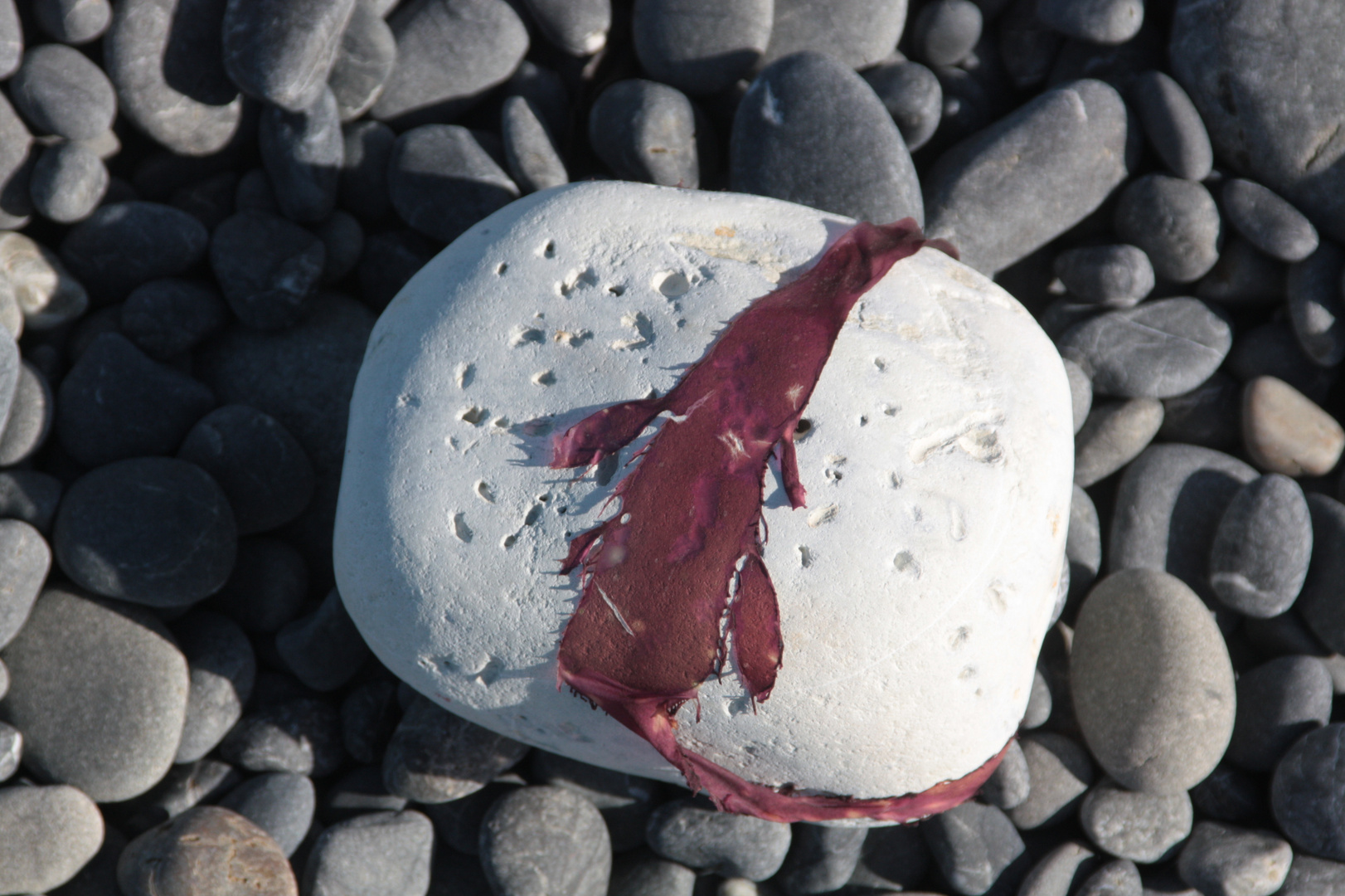 Stein mit Schleife