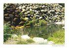 stein wasser und grün :)