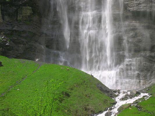 Steinböcke vor Wasserfall