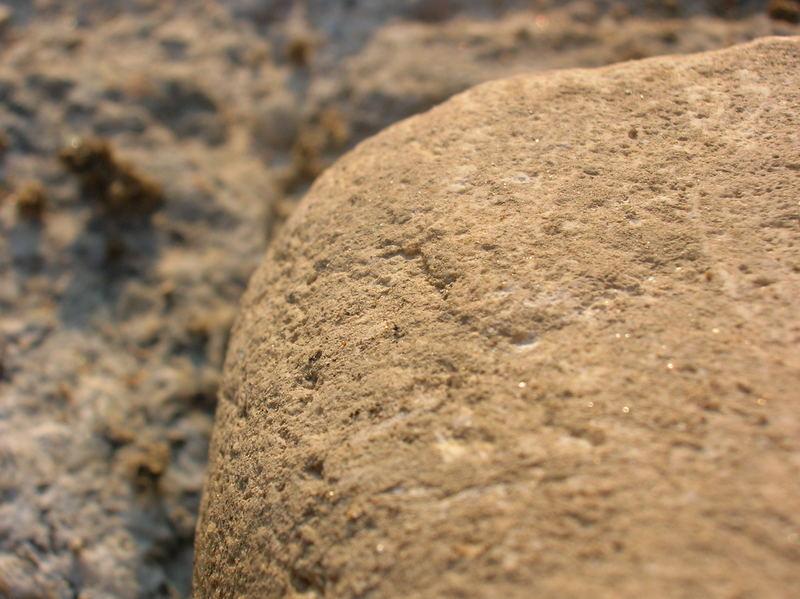 Steinchen Kommt Groß Raus
