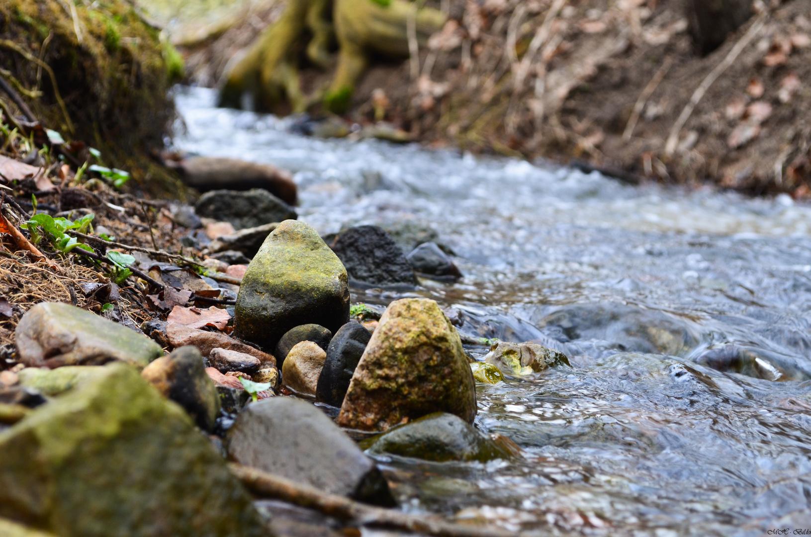 Steine am Fluss
