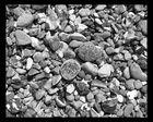 Steine an Dänemarks Küste